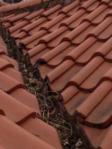 gutter cleaning, gutter repairs, roofers in edinburgh